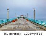 beautiful hermosa beach in...   Shutterstock . vector #1203944518