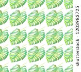 tropics seamless pattern with... | Shutterstock . vector #1203983725