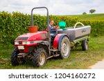 pfalz  germany   september 21...   Shutterstock . vector #1204160272