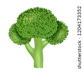 natural broccoli icon.... | Shutterstock .eps vector #1204173352