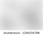 grunge halftone background ... | Shutterstock .eps vector #1204256788