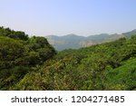 view of the forests and hills... | Shutterstock . vector #1204271485