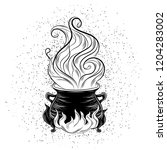 witch's cauldron  magical thing ... | Shutterstock .eps vector #1204283002