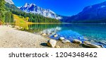 emerald lake yoho national park ... | Shutterstock . vector #1204348462