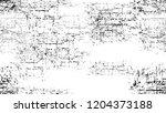 black and white stripes in...   Shutterstock .eps vector #1204373188