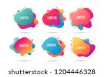 limited symbol. special offer... | Shutterstock .eps vector #1204446328