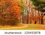 Background Bright Autumnal...