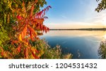 colorful autumn background | Shutterstock . vector #1204531432