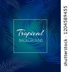 beautiful palm leaf tropical... | Shutterstock . vector #1204589455