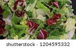 fresh green and red lettuce... | Shutterstock . vector #1204595332