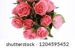 valentine's day roses close up. | Shutterstock . vector #1204595452