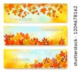 three autumn nature banners... | Shutterstock .eps vector #1204678162