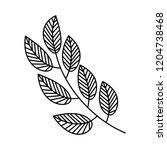 branch leaves linear on white... | Shutterstock .eps vector #1204738468