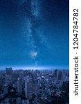 stars of the milky way over big ...   Shutterstock . vector #1204784782