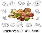 hand drawn nuts and seeds.... | Shutterstock .eps vector #1204816408