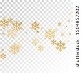 crystal snowflake and circle... | Shutterstock .eps vector #1204857202