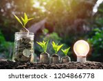coins in glass jar with young... | Shutterstock . vector #1204866778