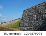 strengthening the soil with... | Shutterstock . vector #1204879078