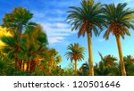 hawaiian paradise at awesome...   Shutterstock . vector #120501646