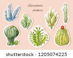 cacti vector stickers. hand... | Shutterstock .eps vector #1205074225