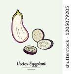 eggplant   hand drawn... | Shutterstock .eps vector #1205079205