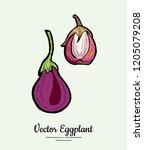 eggplant   hand drawn... | Shutterstock .eps vector #1205079208