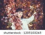 beautiful girl in the autumn... | Shutterstock . vector #1205103265