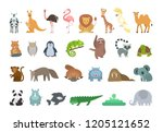baby animals set. colorful...   Shutterstock . vector #1205121652