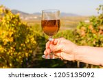 hand of a winemaker with a wine ...   Shutterstock . vector #1205135092