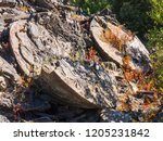 ruins of a former mine english... | Shutterstock . vector #1205231842