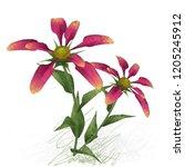 2d illustration. decorative... | Shutterstock . vector #1205245912