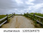 abstract beach path nature... | Shutterstock . vector #1205269375