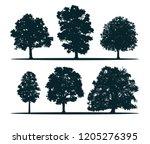 tree silhouettes   oak  elm ... | Shutterstock . vector #1205276395