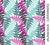 fern frond herbs  tropical... | Shutterstock .eps vector #1205346052