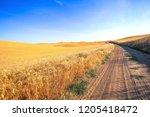 rural road landscape at palouse ...   Shutterstock . vector #1205418472