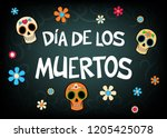 mexican holiday vector... | Shutterstock .eps vector #1205425078
