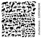 Stock vector big set of animals silhouettes 1205438248