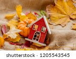 orange pumpkin with wooden... | Shutterstock . vector #1205543545