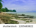scenery of coast after low tide ... | Shutterstock . vector #1205683822