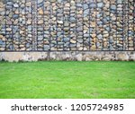 texture for the background of... | Shutterstock . vector #1205724985
