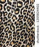 leopard fur black dot on brown...   Shutterstock . vector #1205824402