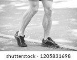 legs of male athlete runner...   Shutterstock . vector #1205831698