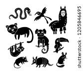 collection of vector detailed...   Shutterstock .eps vector #1205846695