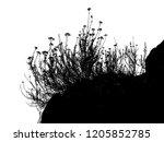 realistic grass silhouettes... | Shutterstock . vector #1205852785