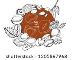isolated vector set of nuts on... | Shutterstock .eps vector #1205867968
