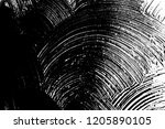 abstract background. monochrome ... | Shutterstock . vector #1205890105