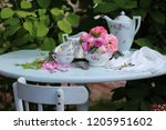 Tea Party In Garden  Vintage...