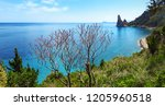 scenic view of the... | Shutterstock . vector #1205960518