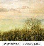 vintage winter landscape with... | Shutterstock . vector #1205981368