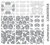 vector set of floral leafs... | Shutterstock .eps vector #1206005818